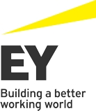 ernst young 2014